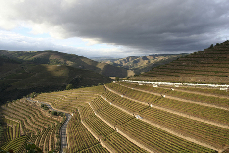 Christian Seely in the Douro | The Douro Index | Scoop.it