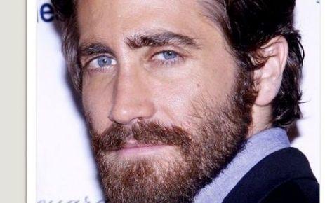 L'acteur Jake Gyllenhaal blessé à la main sur un tournage - Le Parisien   En coulisses   Scoop.it