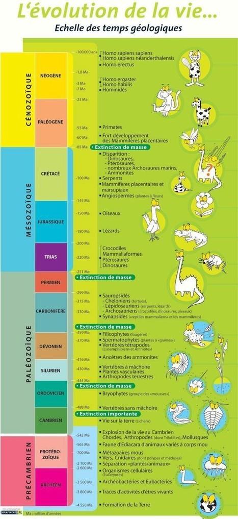 Variations du taux d'oxygène et évolution de la vie au Paléoprotérozoique | EntomoScience | Scoop.it