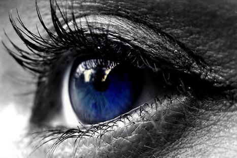 Windows 8 demoed with new Gaze eye-tracking tool | Microsoft | Scoop.it