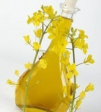 Choose Rapeseed oil to Get More Health Benefits | My Scoop | Scoop.it