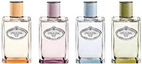 Niche… ou pasniche ? | Influences olfactives | Scoop.it