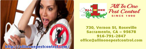 Pest Control Service Sacramento CA | All in One Pest Control | Scoop.it