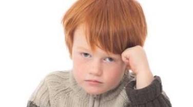 Scotland: Ginger School Children Given 'Confidence-Boosting Workshops' | Education Zone | Scoop.it