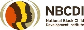 Announcing: President & CEO Search for NBCDI | Nonprofit Employment | Scoop.it