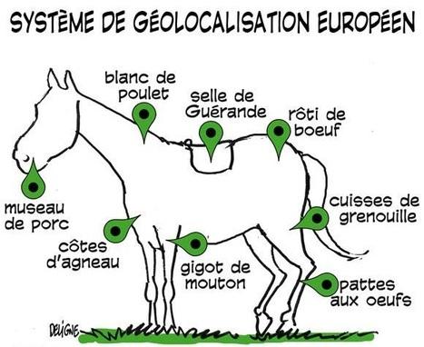 La géolocalisation, un 'moyen technique' pour des investigations..., par Geneviève Koubi - Droit cri-TIC   Intervalles   Scoop.it