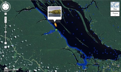 | Google's Amazon Rainforest Street View Is Ready For You To Explore | Deforestation In The Amazon Rainforest | Scoop.it