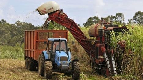 Comment concilier les rêves des paysans, des industriels et des banquiers ivoiriens? | Questions de développement ... | Scoop.it