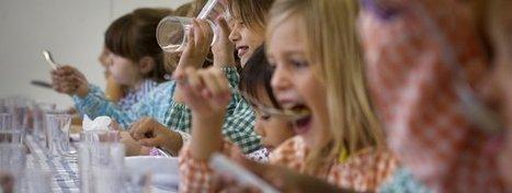 La importancia de la alimentación | La Mejor Educación Pública | Scoop.it