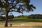 Stoller Family Estate. world class wines and genuine hospitality in a stunning setting   Emily Approved!   Scoop.it