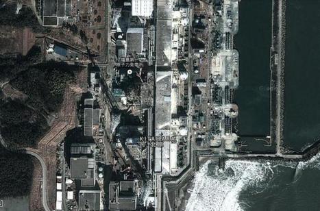Fukushima : la santé des Japonais sous surveillance   Japon : séisme, tsunami & conséquences   Scoop.it