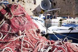 WWF y MSC analizan el impacto de las pesquerías en el Mediterráneo | Planeta Tierra | Scoop.it