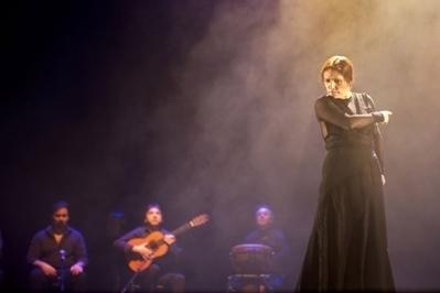'Espero que no llegue el día en que busquemos flamenco en el extranjero'   deFlamenco   Scoop.it