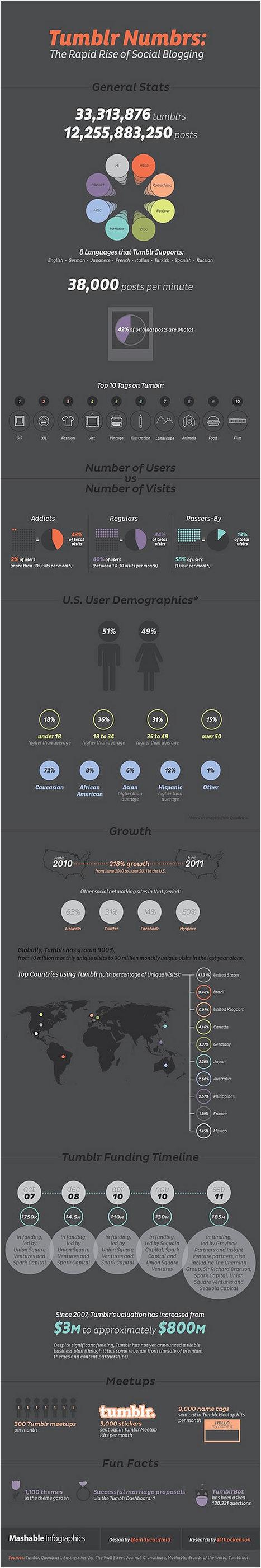 [infographie] Retour sur le succès de Tumblr | Social Media Curation par Mon Habitat Web | Scoop.it