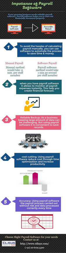 importance-of-payroll software | payroll software Pune | Scoop.it