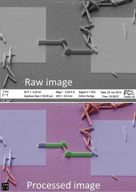 How to make false colored SEM images | KEEP CALM and ... | PPC (Pay Per Click) | Scoop.it