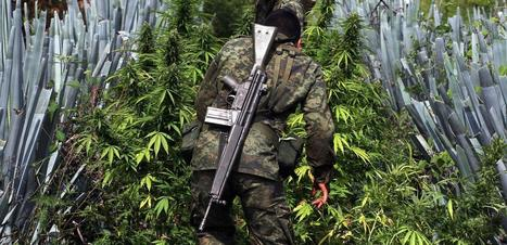 11 Months After Marijuana Legalization, Here's What's Happening to Mexican Cartels   Police Problems and Policy   Scoop.it