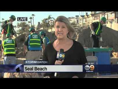 Reporter Hit by C-Stand Not Secured with Sandbags... While Reporting on Sandbags | xposing world of Photography & Design | Scoop.it