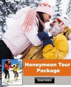 LTC Package Srinagar | Holiday Packages | Scoop.it