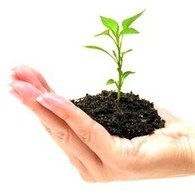 3 Must Read Financial Tips for New Business Owners   Small Biz ...   New Business Start Up Financing   Business News   Scoop.it