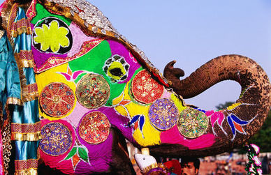 Elephant Festival | Fairs and Festivals of Jaipur| Holiday India | Holiday India | Scoop.it