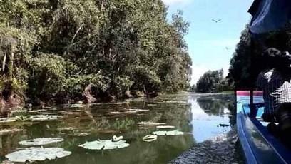 La zone humide de Lang Sen, 7e site Ramsar du Vietnam | De Natura Rerum | Scoop.it