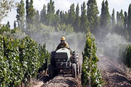Pesticides : la France mauvaise élève | Bio alimentation | Scoop.it