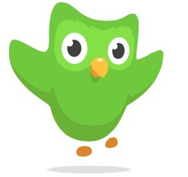 Duolingo | Teaching foreign languages using social media | Scoop.it