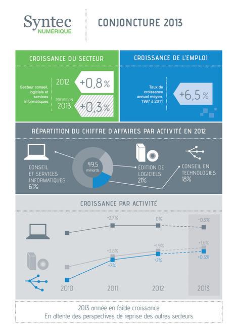 Infographie : Le Syntec numérique prévoit une légère baisse de croissance en 2013 - FrenchWeb   Profession chef de produit logiciel informatique   Scoop.it