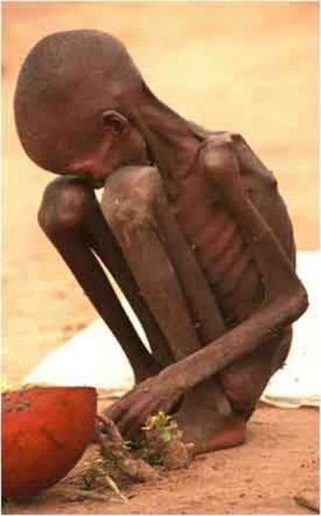 10 Pictures Depicting Real Hunger in the World | Top Ten Lists | Scoop.it