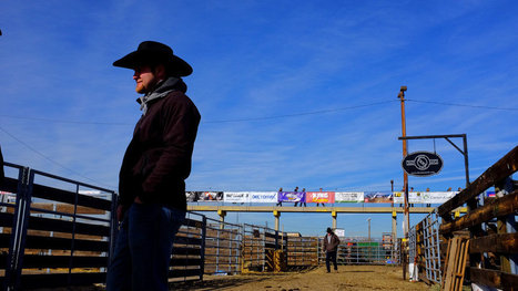 A Harder Outlook for Today's Cowboy | Horses! Horses! Horses! | Scoop.it