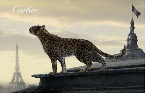 L'ODYSSEE DE CARTIER, QUAND LUXE ET DIGITAL SE RETROUVENT LE TEMPS D'UN VOYAGE | Brand content | Scoop.it