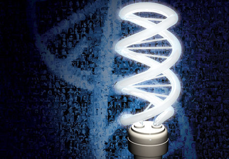 Nature Specials : the human genome at ten | Healthcare Innovation | Scoop.it