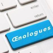 Professionnels du vin, donnez votre avis sur le métier d'Oenologue   Communication, Marketing Web&Vin   Scoop.it