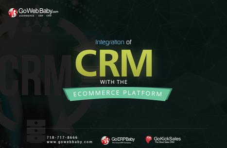 Integration of CRM with the Ecommerce Platform | Gowebbaby's Prestigious Web Design | Scoop.it
