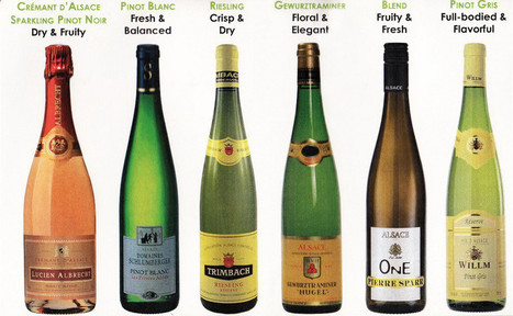 Alsace Wine Region and Grapes   SevenWines   Scoop.it