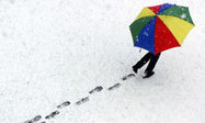 Davos 2013: why food and resource security are on the agenda | Food Security | Scoop.it