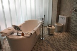Better Bathrooms | alisterbrook | Scoop.it