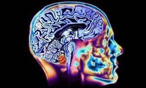 Neurociencia cognitiva, educar con emociones | TECNOLOGÍA Y EDUCACIÓN | Scoop.it