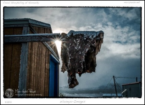 The Day After The Hunt | Documentary photography | Scoop.it