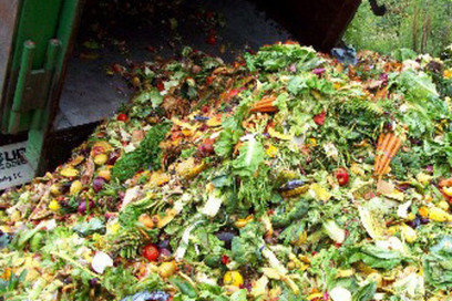 "Agencies unite to reduce food waste (""time for everyone to jump on the bandwagon"") 