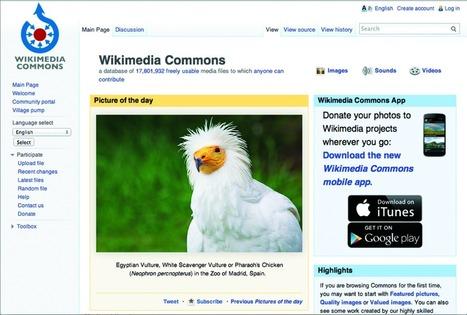 ¿Dónde buscar contenido multimedia de dominio público? Wikimedia commons | Pedalogica: educación y TIC | Scoop.it