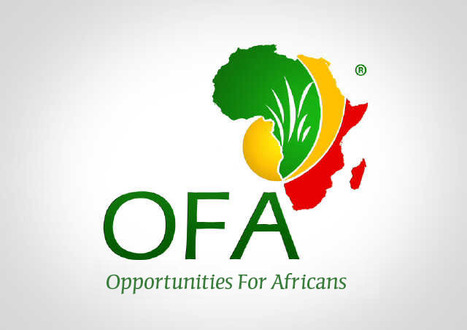 OpportunitiesForAfricans.com | Opportunities for Africans | Scoop.it