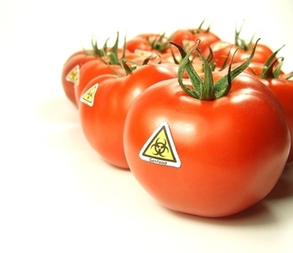 Who Should You Believe When it Comes to the Safety of Genetically Engineered Foods? | Daily Magazine | Scoop.it