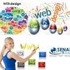 SENABI Infotech Limited