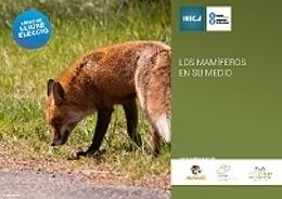 Nuevo curso de IUSC sobre los mamíferos en su medio | Infraestructura Sostenible | Scoop.it