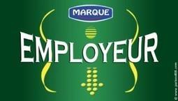 Marque employeur : ce qu'elle fait à l'intérieur se voit à l'extérieur | Actu RH - Pro&Co | Scoop.it