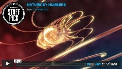 Mathematics in Sunflowers | Technomathpr (Tecnología y Matemática) | Scoop.it