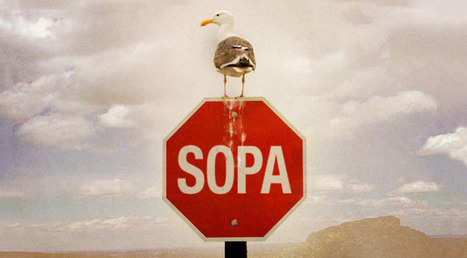 Boycott SOPA: An Android app that terrifies publishers and politicians | ExtremeTech | Be Productive | Scoop.it