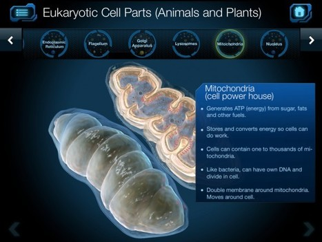 Best Interactive eBooks | Cell and Cell Structure | EDUcational Chatter | Scoop.it